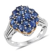 Himalayan Kyanite 14K YG and Platinum Over Sterling Silver Ring (Size 5.0) TGW 3.57 cts.