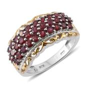 Anthill Garnet 14K YG and Platinum Over Sterling Silver Ring (Size 5.0) TGW 2.80 cts.