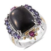 Shungite, Multi Gemstone 14K YG and Platinum Over Sterling Silver Ring (Size 7.0) TGW 17.03 cts.