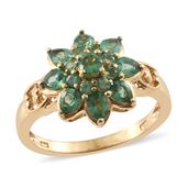 Emeraldine Apatite 14K YG Over Sterling Silver Floral Ring (Size 9.0) TGW 1.98 cts.