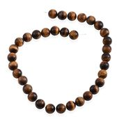 Gem Workshop South African Tigers Eye Bead Strand 425.00 ct tw 16-inch