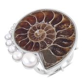 Ammonite, Freshwater Pearl, White Zircon Sterling Silver Ring (Size 9.0) TGW 58.57 cts.