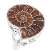 Ammonite, Freshwater Pearl Sterling Silver Ring (Size 10.0) TGW 61.40 cts.