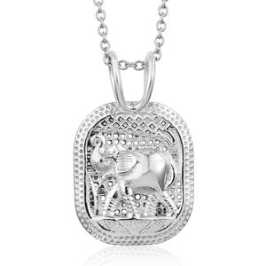 Sterling Silver Pendant With Stainless Steel Chain (20 in)